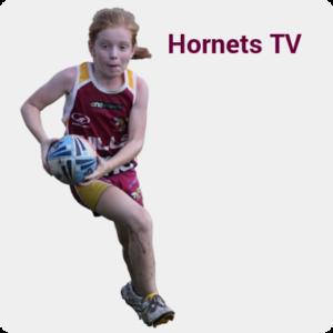 Hornets TV
